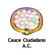 Cauce Ciudadano, A.C.